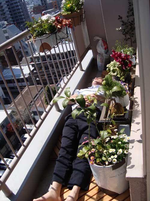 """Сад на балконе """" sfw - приколы, юмор, девки, дтп, машины, фо."""